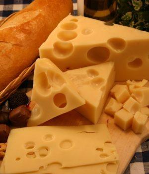 Swiss-Cheese-001-300x351