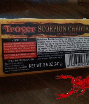 Scorpion-Cheddar2-copy-300x351